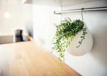 mieszkanie na sprzedaż zabrze gliwice